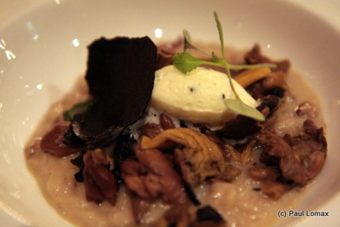 Risotto of wild mushrooms, truffle cream