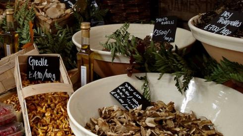 Mushroom display at Carluccio's mushroom market